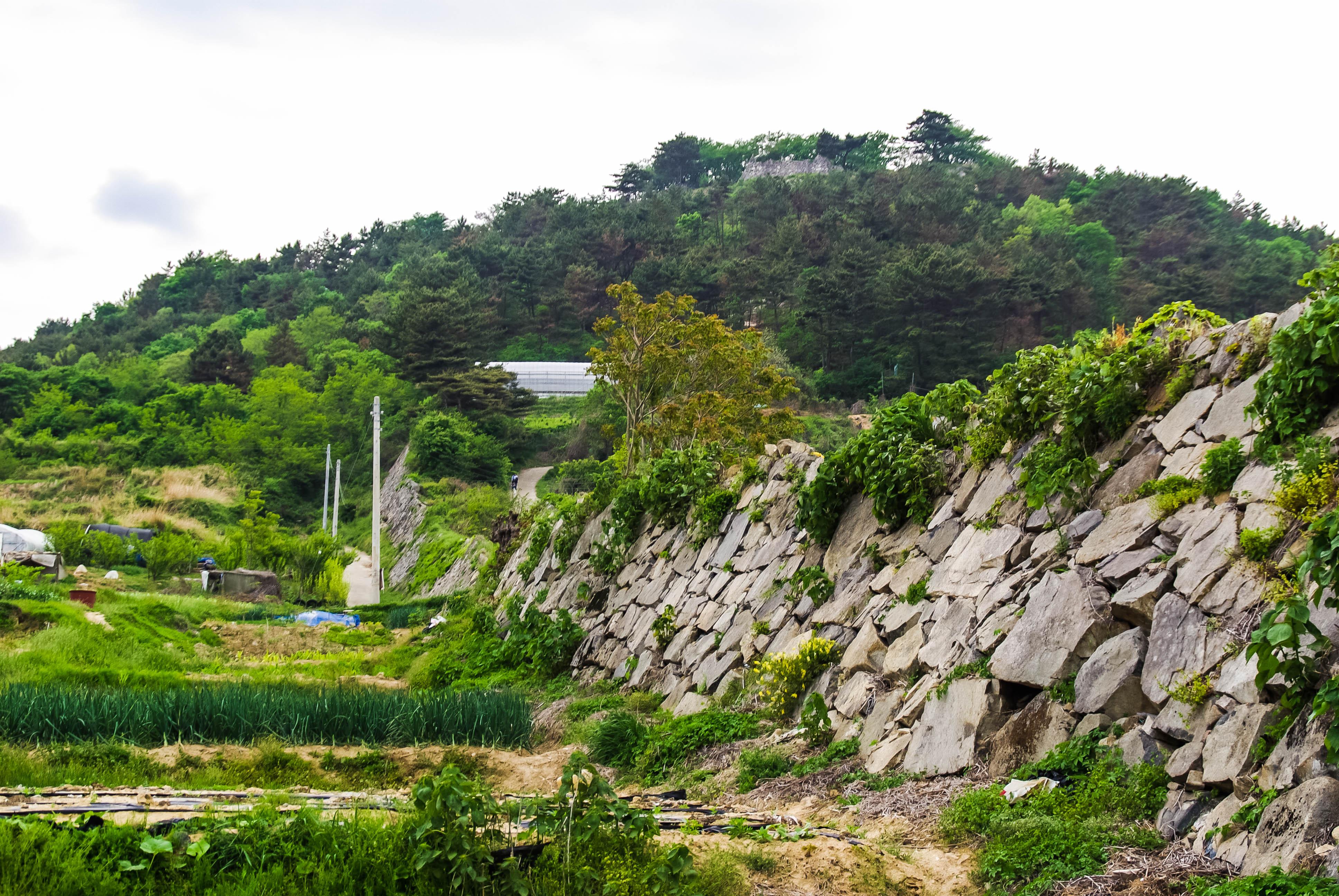 西生浦倭城