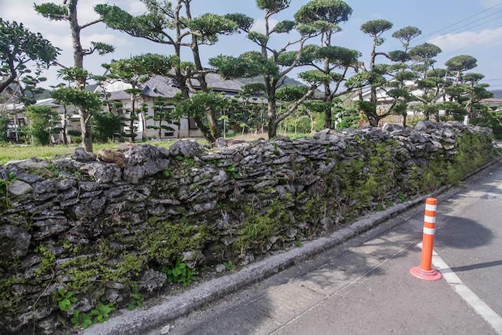075奄美大島(1)